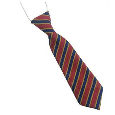 Immaculate Heart School Tie (Elastic)