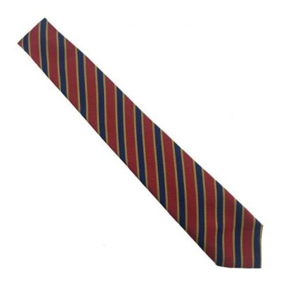 Immaculate Heart School Tie